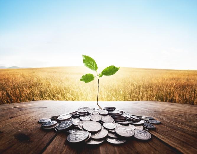 8 conseils pour gérer vos finances en tant que propriétaire de petite entreprise