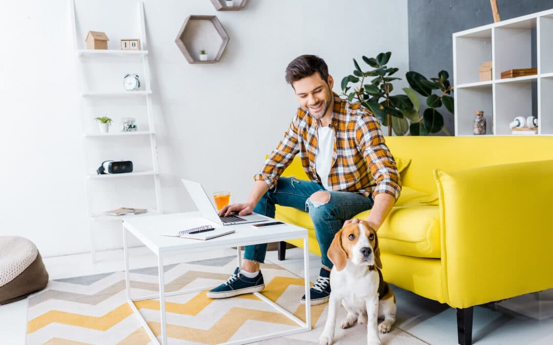 smiling teleworker using laptop in living room with beagle dog